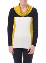 Cowl Neck Knit Top