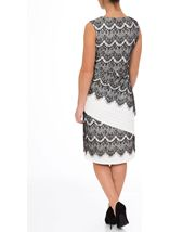 Monochrome Lace And Pleat Fitted Midi Dress
